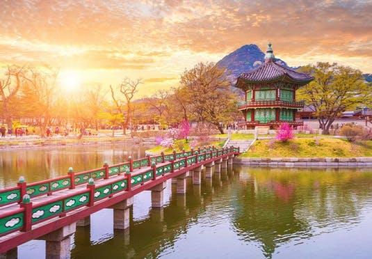 Working in Korea